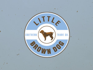 8.26.15_LittleBrownDog